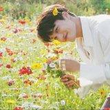 EXOカイの花畑写真