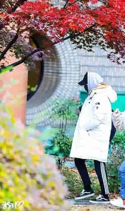 EXOミュージックバンク出勤写真画像